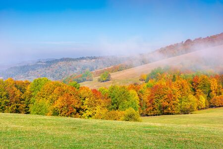 foggy mountain scenery in autumn. clouds rising above the rolling hills on a sunny morning. wonderful landscape with trees in fall foliage and grassy meadows. spectacular weather Stock Photo - 138937754