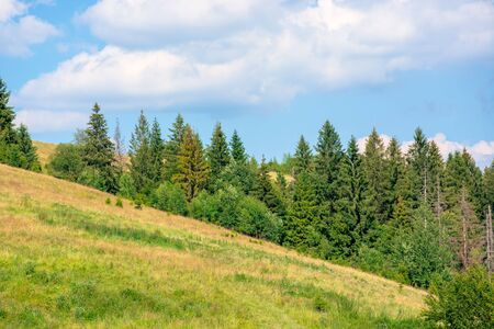 forested hill of carpathian mountains. clouds on the blue sky. ridge in the distance. sunny afternoon weather in summer. Stock Photo - 139182318