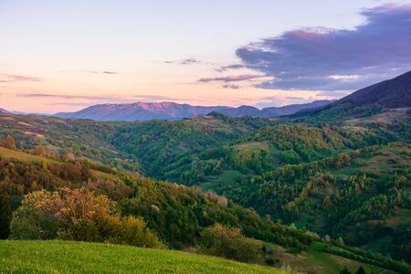 rural landscape in mountains at dusk. amazing view of carpathian countryside with fields and trees on rolling hills. glowing purple clouds on the sky. calm weather in springtime Stock Photo