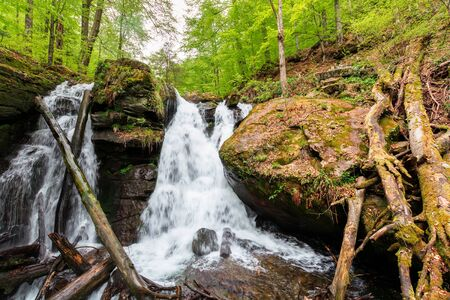 waterfall in the forest. two segment stream. fallen trees in the cataract. beautiful nature scenery in springtime. Voievodyn, TransCarpathia, Ukraine Stock Photo - 139723203