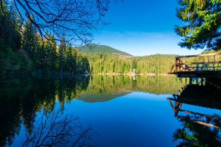 mountain lake among the coniferous forest. morning nature scenery with pier above reflections in calm water. sunny weather with blue cloudless sky in springtime. location Synevyr national park, UA Stock Photo - 140833157