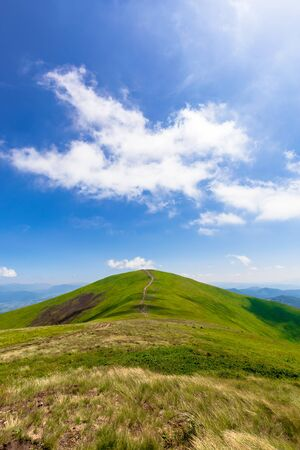 green rolling hills of mountain ridge borzhava. grassy alpine meadows beneath a blue sky with some clouds. beautiful summer landscape of carpathian highlands. Mahura-Zhyde summit in the distance Stock Photo