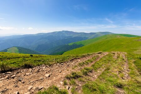green rolling hills of mountain ridge borzhava. grassy alpine meadows beneath a blue sky with some clouds. beautiful summer landscape of carpathian highlands. Stoj summit in the distance
