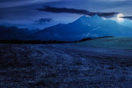 rural landscape of slovakia in summer. empty wheat field in august. high tatras mountain ridge in the distance. sunny weather with clouds on the sky Stock Photo