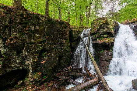 waterfall in the forest. two segment stream. fallen trees in the cataract. beautiful nature scenery in springtime. Voievodyn, TransCarpathia, Ukraine Stock Photo