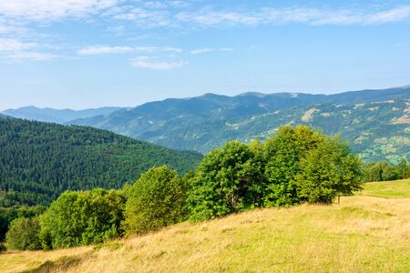 sunny mountain landscape in summer. beautiful scenery with trees on a hillside meadow beneath a blue sky with fluffy clouds. ridge in the distance is clearly visible on a bright day Stock Photo - 140833650