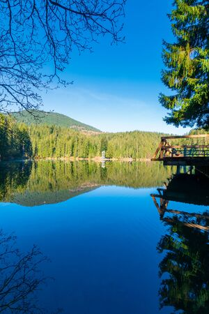 mountain lake among the coniferous forest. morning nature scenery with pier above reflections in calm water. sunny weather with blue cloudless sky in springtime. location Synevyr national park, UA Stock Photo