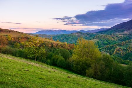rural landscape in mountains at dusk. amazing view of carpathian countryside with fields and trees on rolling hills. glowing purple clouds on the sky. calm weather in springtime Stock Photo - 140833736