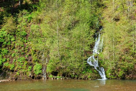 waterfall from the forest on the hill. beautiful nature scenery in springtime. sunny weather