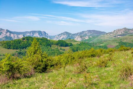 gorges and mountains of Romanian countryside. beautiful rural landscape of valea Manastirii in Alba country. wonderful sunny weather in springtime.