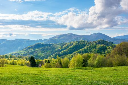 gorgeous rural landscape in mountains. fields and meadows on hills rolling in to the distant ridge. trees in fresh green foliage. nature scenery on a sunny day in spring. fluffy clouds on the sky Stock Photo - 141829178