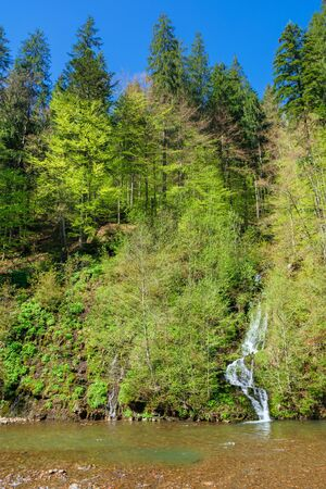 waterfall from the forest on the hill. beautiful nature scenery in springtime. sunny weather Stock Photo - 141829196