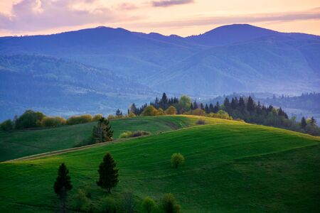 mountainous countryside in springtime at dusk. trees on the rolling hills. ridge in the distance. clouds on the sky. gorgeous rural landscape of carpathians Stock Photo