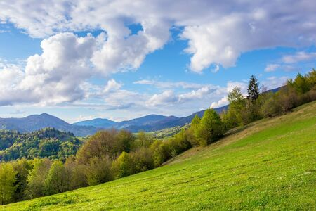 stunning rural landscape in mountains. fields and meadows on hills rolling in to the distant ridge. trees in fresh green foliage. nature scenery on a sunny day in spring. fluffy clouds on the sky Stock Photo