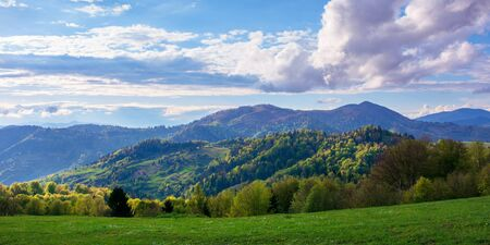 beautiful rural panorama in mountains. fields and meadows on hills rolling in to the distant ridge. trees in fresh green foliage. nature scenery on a sunny day in spring. fluffy clouds on the sky Stock Photo - 142365928