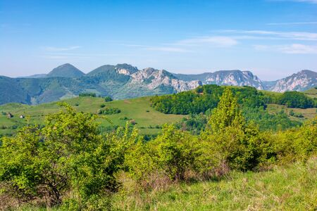 gorges and mountains of Romanian countryside. beautiful rural landscape of valea Manastirii in Alba country. wonderful sunny weather in springtime. Stock Photo - 142366540