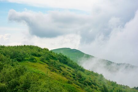 alpine meadows of mnt. runa, ukraine. beautiful nature scenery of carpathian mountains in summer. cloudy weather Stock Photo - 142970262