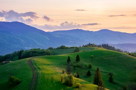 mountainous countryside in springtime at dusk. road among the trees on the rolling hills. ridge in the distance. clouds on the sky. beautiful rural landscape of carpathians Stock Photo