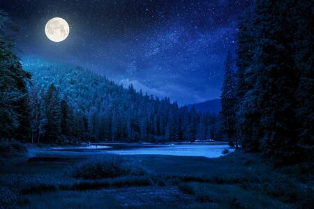 lake summer landscape at night. beautiful scenery among the forest in mountains in full moon light Stock Photo