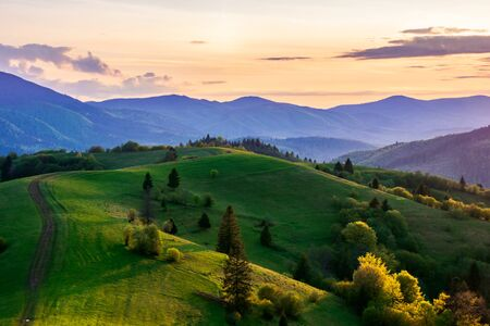 mountainous countryside in springtime at dusk. path trees on the rolling hills. ridge in the distance. clouds on the sky. beautiful rural landscape of carpathians