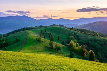 mountainous countryside in springtime at dusk. path uphill in to the distance. trees on the rolling hills. ridge in the distance. clouds on the sky. beautiful rural landscape of carpathians Stock Photo