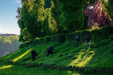 group of people scything the grass on a hump. lawn mowing in an old-school way on a sunny morning in springtime. location kyiv embankment in uzhgorod Stock Photo - 143975805