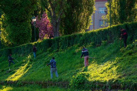 group of people scything the grass on a hump. lawn mowing in an old-school way on a sunny morning in springtime. location kyiv embankment in uzhgorod Stock Photo - 144497677