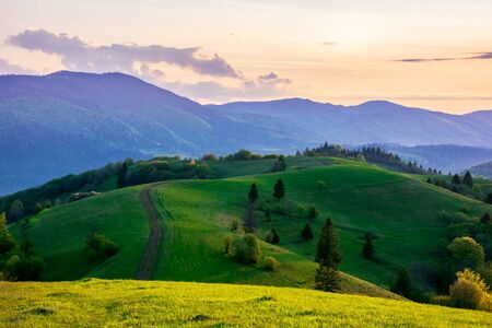mountainous countryside in springtime at dusk. dirt road and trees on the rolling hills. ridge in the distance. clouds on the sky. beautiful rural landscape of carpathians