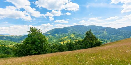 fields and meadows of rural landscape in summer. idyllic mountain scenery on a sunny day. grass covered hills rolling in to the distant ridge beneath a bright blue sky with fluffy clouds Stock Photo