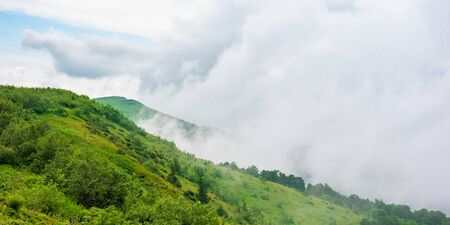 alpine meadows of mnt. runa, ukraine. beautiful nature scenery of carpathian mountains in summer. cloudy weather Stock Photo