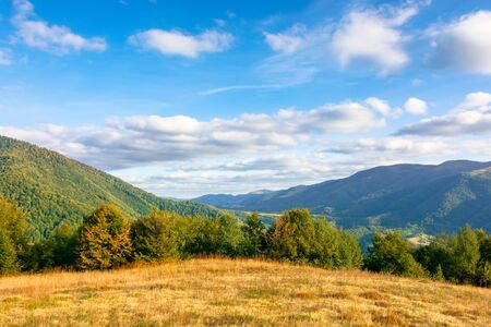 wonderful autumn scenery on a sunny evening. trees and weathered grass on the hills. mountain range in the distance beneath a blue sky with clouds