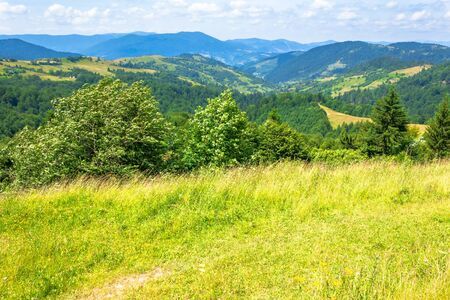 mountain landscape in summer. blue sky with fluffy clouds. green grass on the meadows. hills rolling into the distant ridge. idyllic nature scenery of carpathian countryside