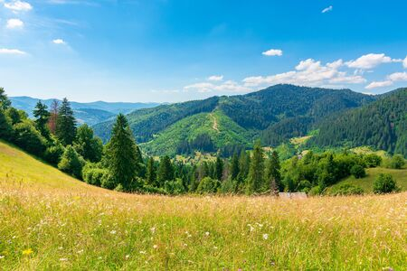 countryside fields and meadows on hills in summer. idyllic mountain landscape on a sunny day. scenery rolling in to the distant ridge. wonderful weather with fluffy clouds on a blue sky Stock Photo