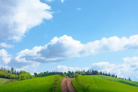 beautiful nature mountain scenery. path through forest on grassy hills in springtime. concept of outdoor adventure on a sunny day with clouds on the blue sky