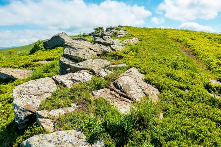 mountain summer landscape. meadow with stones in the grass on top of the hillside near the summit Stock Photo