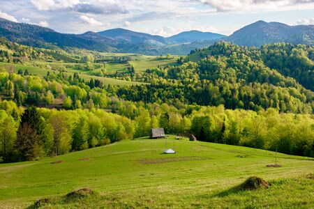 green fields rural landscape. beautiful countryside nature in spring. scenic view of meadow in grass. peaceful nature scenery. hills rolling in to the distant mountain