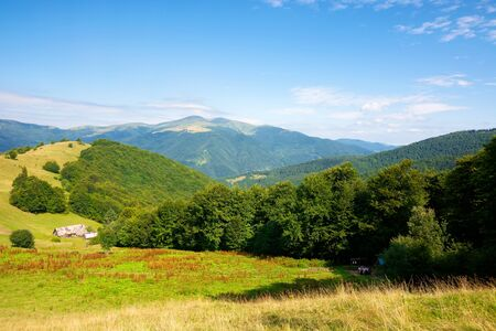 mountain landscape with green meadow on the hill. fluffy clouds on the blue sky above the distant ridge. wonderful summer weather. great views of carpathian countryside