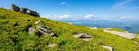 mountain meadow in summer landscape. blue sky with fluffy clouds. beautiful summer scenery on a sunny day. rocks on the slope among the grass. view in to the distance