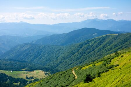 summer mountain landscape. green hills rolling in to the distance. fluffy clouds on the blue sky above the valley. bright sunny day