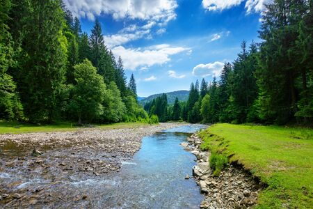 river in the mountain landscape. beautiful nature scenery with water flow among the forest. sunny day with fluffy clouds on the sky