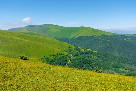 scenery of carpathian mountains. great views on a summer day. borzhava ridge is a popular travel destination of ukraine Stock Photo