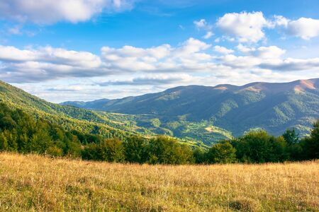 autumn landscape in evening light. trees and grass on the hillsside meadow. rural valley and mountain ridge in the distance beneath a blue sky with clouds Stock Photo