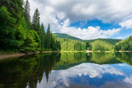 reflection in the water. lake among the forest. beautiful nature landscape in summer. sunny weather with puffy clouds on the sky