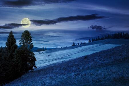 grassy meadow in mountains at night. beautiful countryside landscape in full moon light. sky with clouds Stock Photo