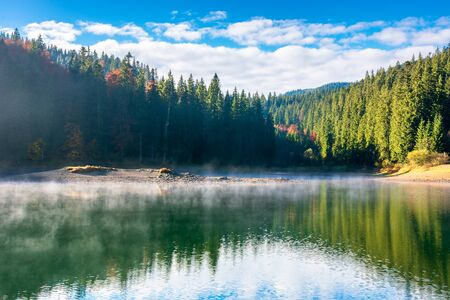 lake landscape at foggy sunrise. misty scenery reflecting in the water. wonderful autumn morning in fall season. trees in colorful foliage Stock Photo