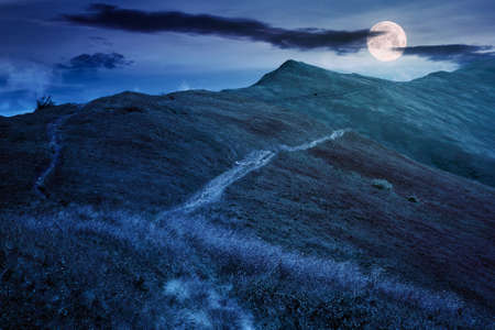 path through mountain range at night. grass on the hills and slopes. summer landscape in full moon light.