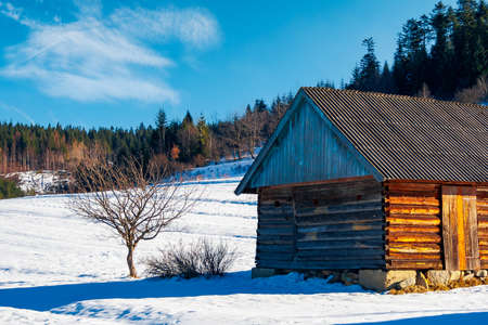abandoned barn in Carpathian mountains. beautiful sunny winter weather Editorial