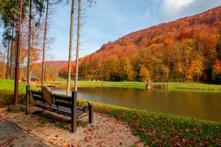 small lake in autumn park. forest on the hills in fall colors. green grass on the shore. beautiful nature scenery on a sunny day