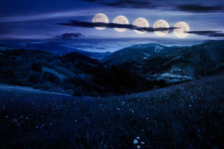 summer landscape in mountains at night. amazing scenery with herbs in fields on rolling hills in full moon light. fake news concept Stock Photo