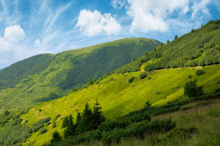 path through grassy alpine mountain meadow. beautiful landscape of carpathians. clouds on the sky Stock Photo